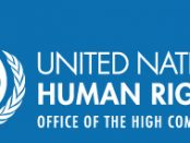 Office of the High Commissioner for Human Rights (OHCHR)