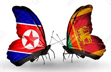 Two butterflies with flags on wings as symbol of relations North Korea and Sri Lanka