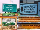 jaffna boards